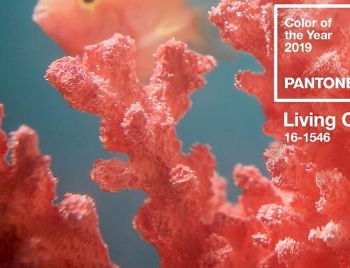 Colore pantone 2019: protagonista è il Living Coral
